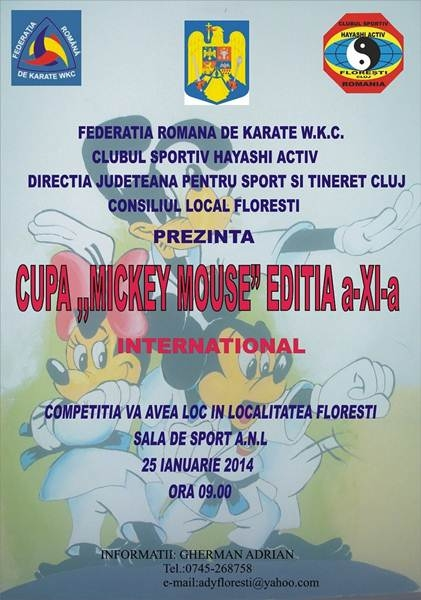cupa mickey mouse karate 2014.jpg