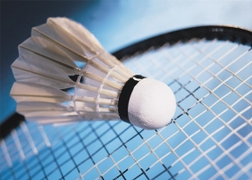 Badminton InSport Mures.jpg