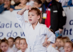 InSport Aiud Karate stire scrisa de Silviu Prescornitoiu.jpg