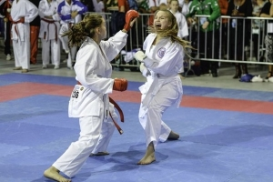 Karate WUKF Bistrita Arte Martiale.jpg