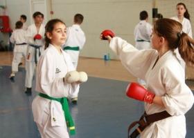 Karate WUKF Pucioasa Dambovita.jpg