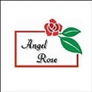 Salon Beauty Angel Rose