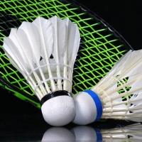 badminton bucuresti.jpg