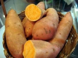 brasilia - batata doce laranja ela.jpg