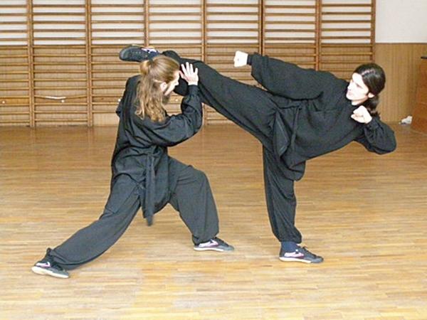 Arte martiale Wu Tao Kung Fu