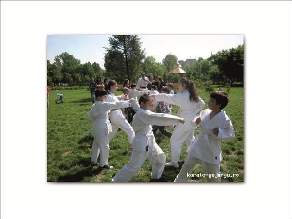 Club Sportiv de Arte Martiale Olimpic