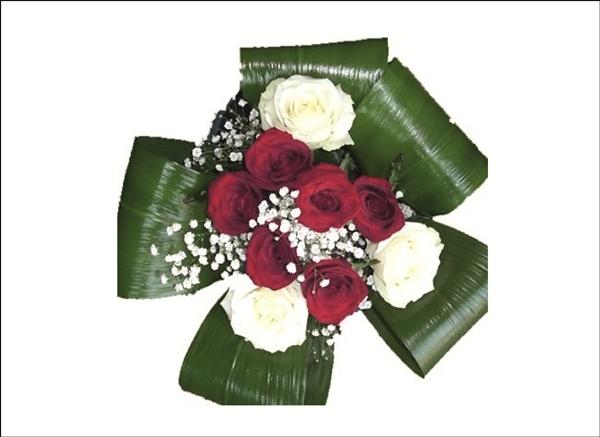 Trimite Flori la Iasi