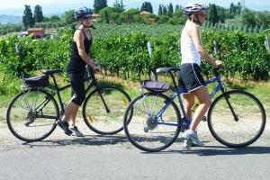 ciclism prin vie.jpg