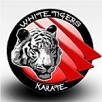 Club Karate White Tigers