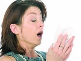 gripa aviara.jpg