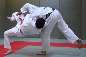 judo seniori.jpg