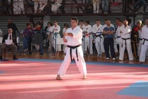karate shotokan ski.jpg
