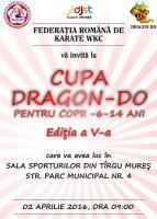 karate tg mures.jpg