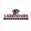Labradors Basketball