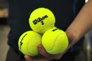 mingi de tenis wilson.jpg