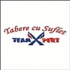 Teamexpert Europe