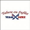 Teamexpert Europe