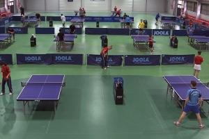 tenis de masa sala polivalenta dumbravita.jpg